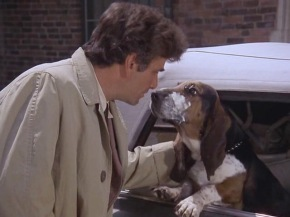 A Lieutenant's best friend: Columbo and Dog