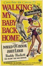 Walking My Baby poster